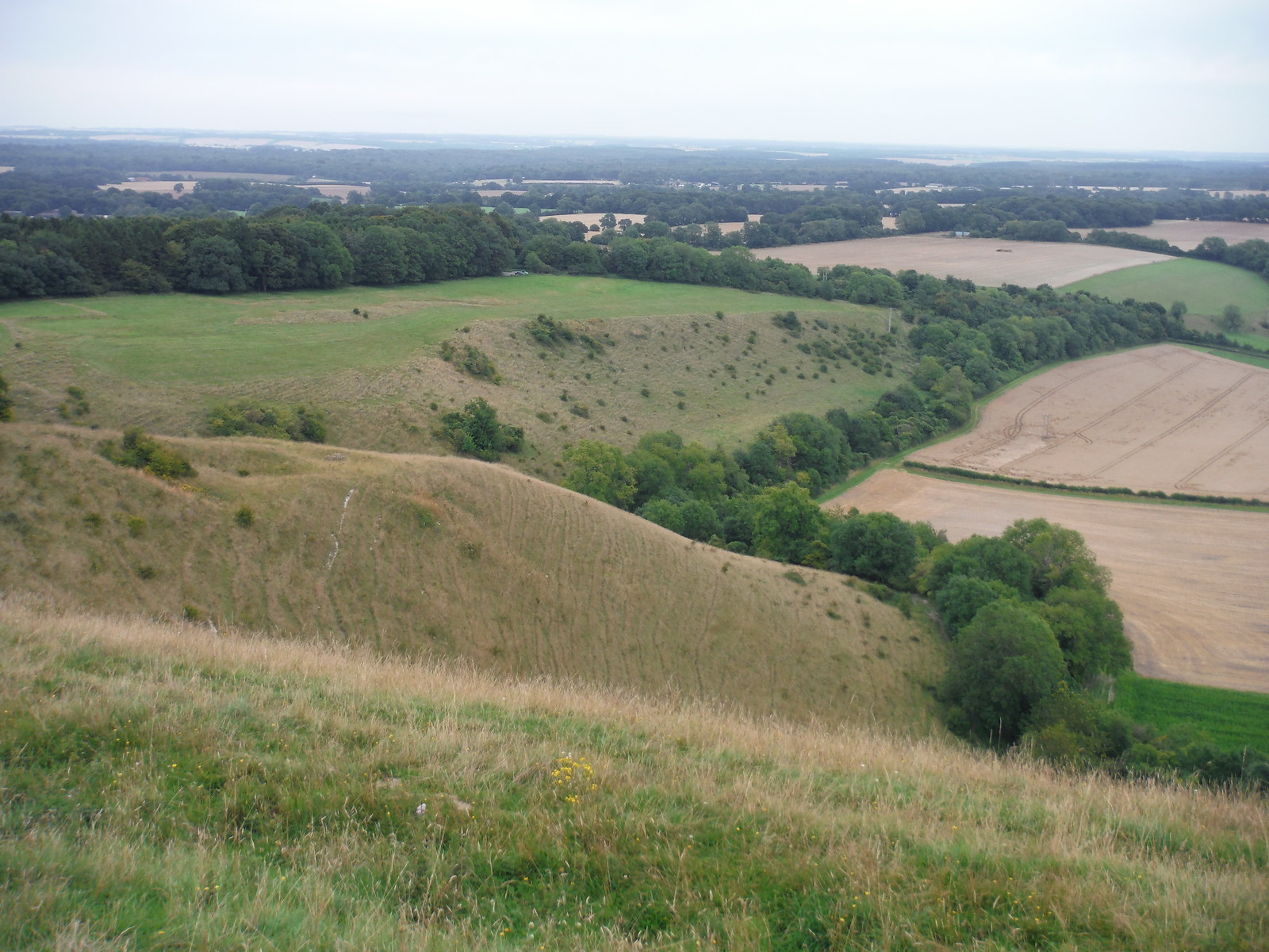 Easterly Views from Martinsell Hill SWC Walk 127 Pewsey Circular