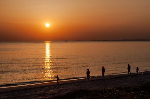 japan coast chiba 日本 seashore 千葉県 南房総市