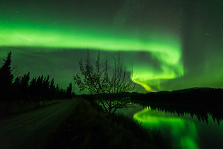 Aurora and River | by kdee64