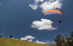 Mt. Tamborine Paragliding