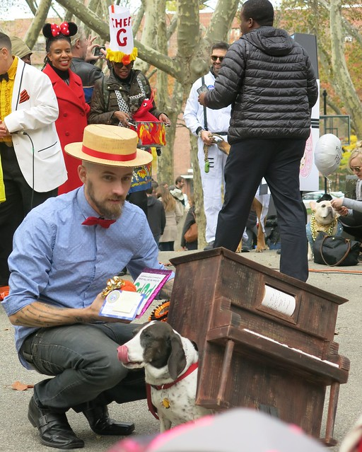Player Piano (Fort Greene Pup Costume Parade, 2015)