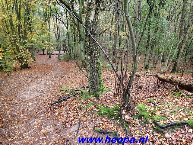2016-11-09  Gooimeer tocht   25 KM   (66)
