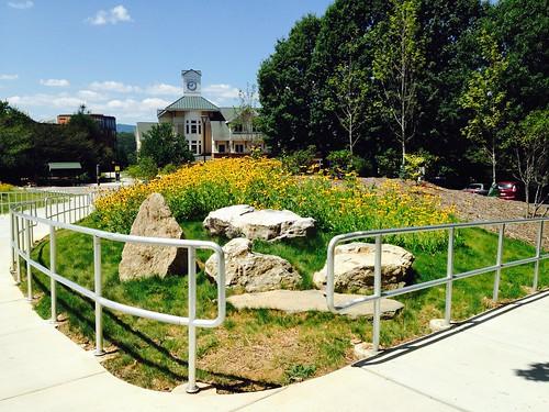 public yellow campus landscape nc rocks university wildflowers accents unca designed explored