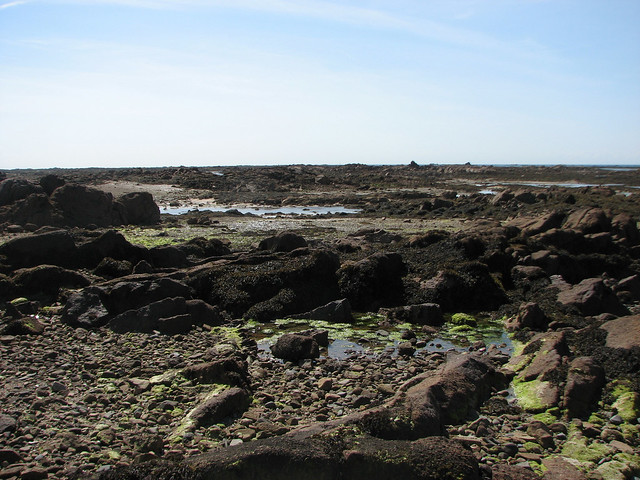 Rocks off the south east coast of Jersey