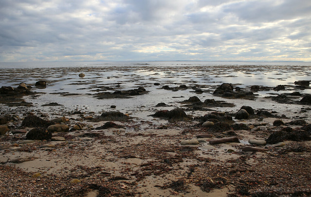 The coast south of Brora
