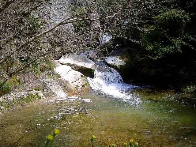 Pequeña cascada en el río Purón