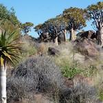 Pá, 03/30/2012 - 08:07 - Afrika 2012