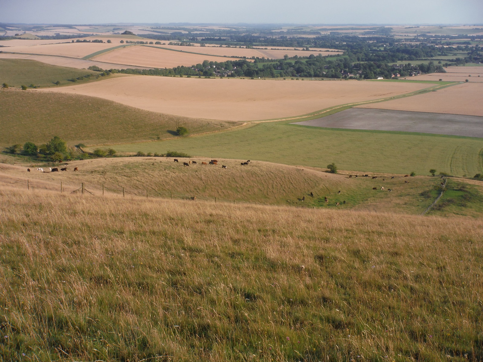 The Vale of Pewsey from Walkers Hill SWC Walk 127 Pewsey Circular