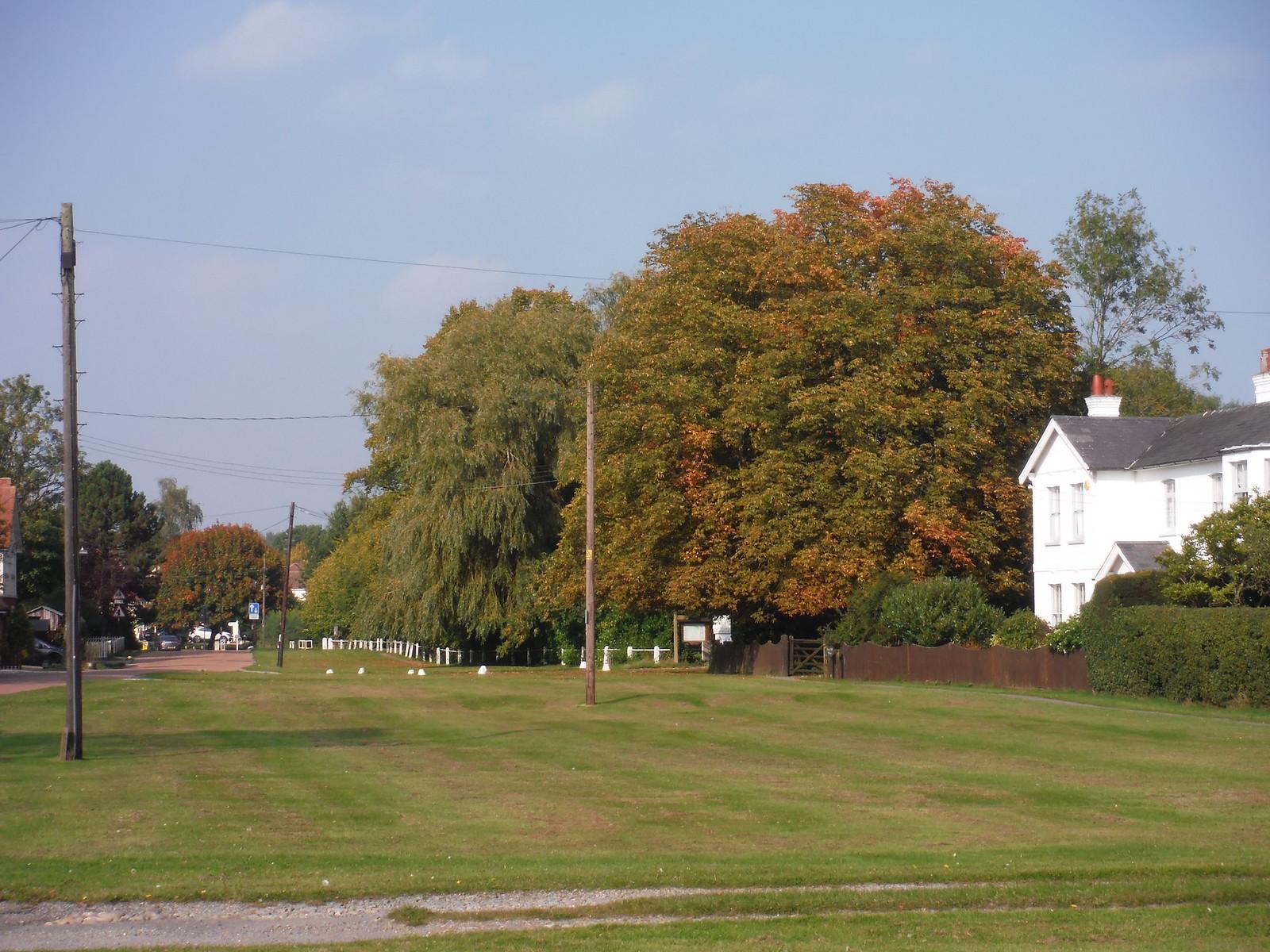 East Hanningfield Green SWC Walk 159 South Woodham Ferrers to North Fambridge