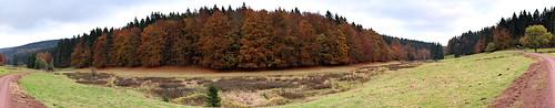 panorama green forest germany deutschland view olympus thuringia wald em1 2015 thüringe vesser mzuiko2518