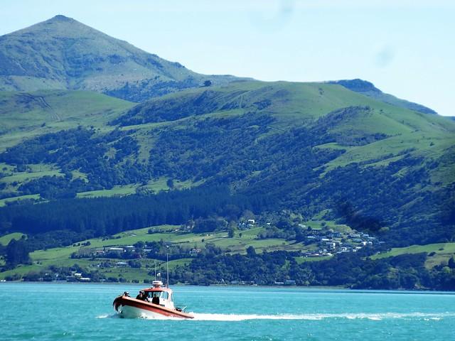 Akaroa on Banks Peninsula. The Coast Guard checking the fishing boats.