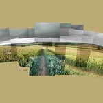 Path To Stonton Wyville #leicestershireround #leicestershire #footpath #crops #stontonwyville #ceriphotomontage #followme #storm #clouds #landscape #landscape_lovers #instagrames