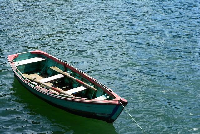Le bot