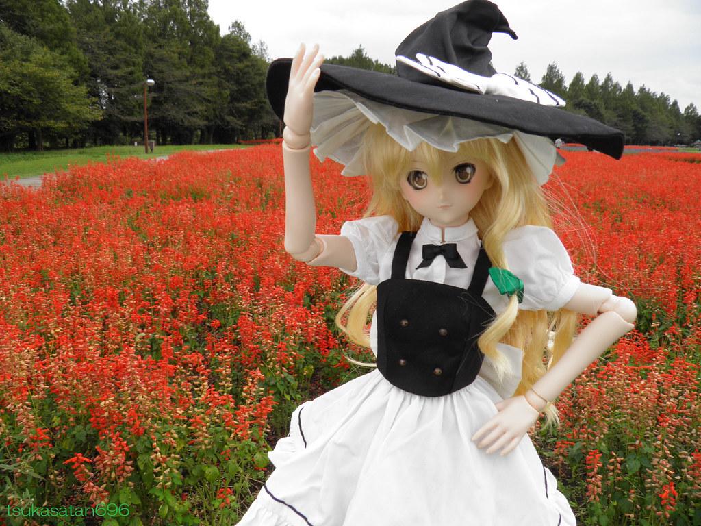 霧雨魔理沙 Marisa Kirisame From Touhou Project At Omiya Hananoo