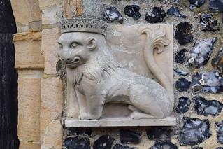 little crowned lion