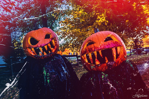Pumpkins Heads (1)