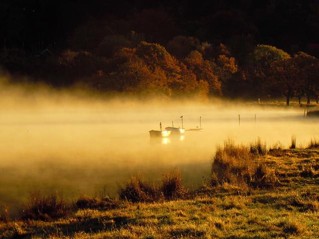 Misty boats.