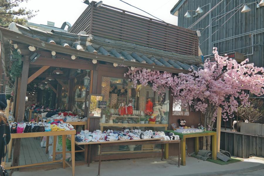 Nguyen, Anna; South Korea - Episode 3 (12)