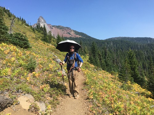 PCT: Day 134