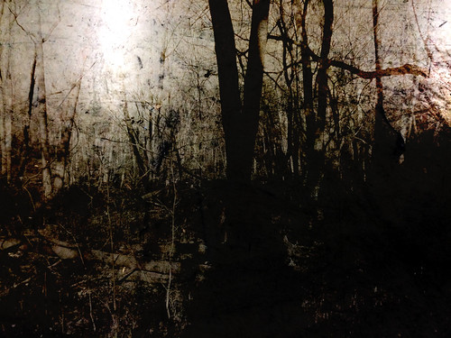 abstract art texture silhouette dark woods noir shadows michigan surrealism surreal overlay textures minimalism textured 2015