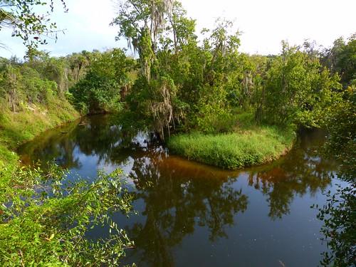 Turkey Creek Park, Palm Bay FL | by Rusty Clark ~ 100K Photos