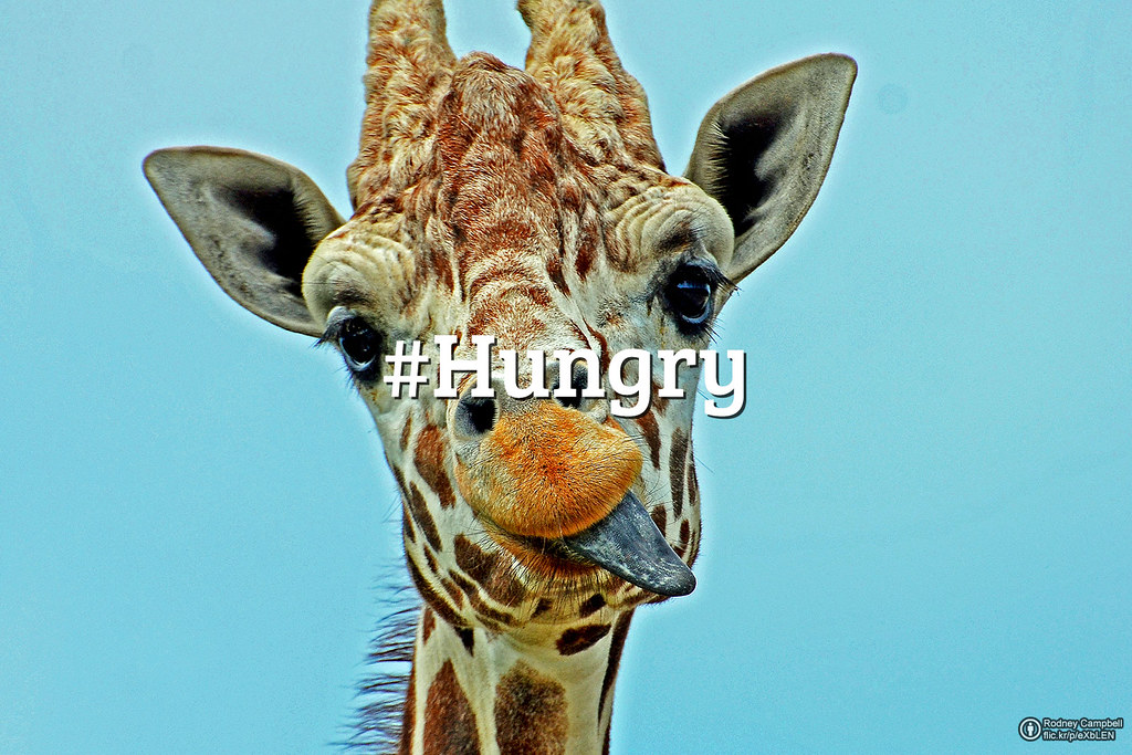 Flickr Friday: #Hungry