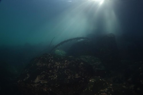 plongée du 8 novembre | by Plongeur d'Evian