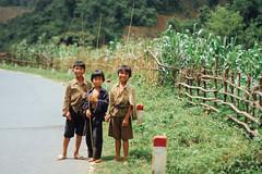 Children With Bamboo Fishing Poles, Lai Châu Vietnam