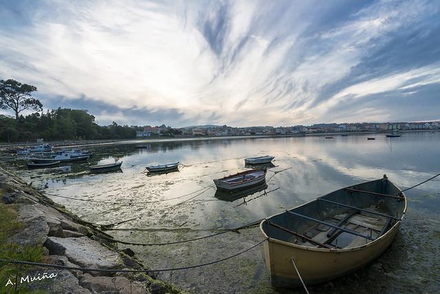 Barcas amarradas