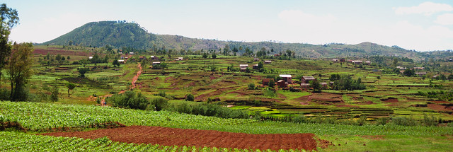 Madagascar1 - 46