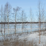 Čt, 04/03/2008 - 12:15 - Finsko