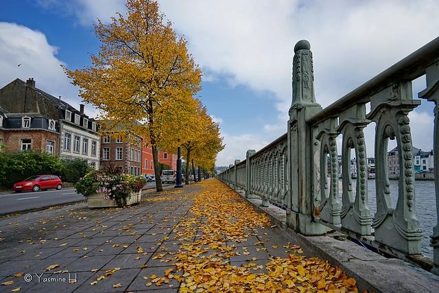 DSC01594 autumn Namur