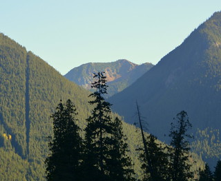 THE U.S.A. /CANADA BORDER ON THE LEFT.   EARLY MORNING IN THE NORTH CASCADES (CANADIAN SIDE)  BC.