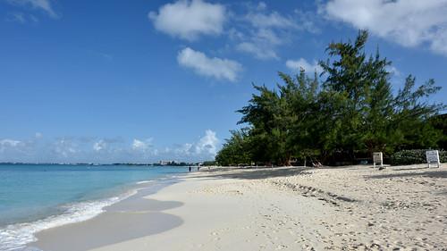 ocean sea sky cloud plant tree beach water sunshine skyline landscape sand shadows bright outdoor peoples footsteps serene bluewhite signboards