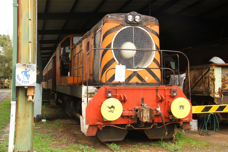 English Electric D9 by David Arnold