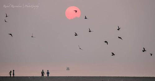 life morning sunset people sunlight love beach sunrise live moring beacj