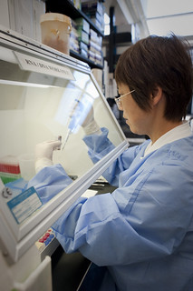 A scientist in the Vaccine Research Center at NIH | by National Institutes of Health (NIH)