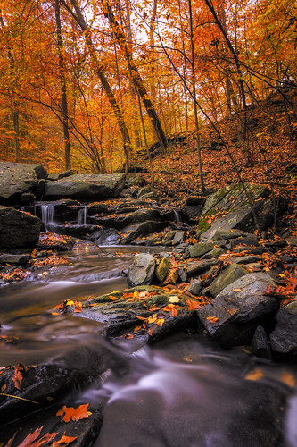 autumn fall nature creek season waterfall woods stream maryland foliage trail cascade hss lateautumn patapscostatepark sawmillbranchtrail sliderssunday