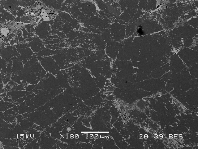 Fluorapophyllite-(Na)