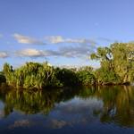 02 Viajefilos en Australia, Kakadu NP 090