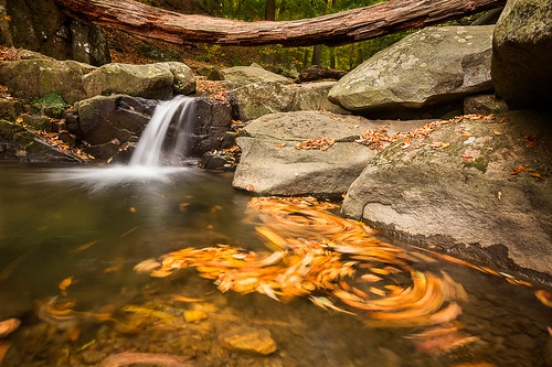 fall leaves canon waterfall maryland lochraven 60d