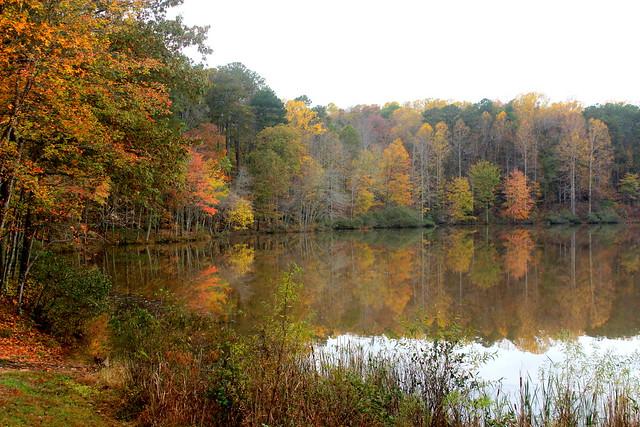 November changes colors