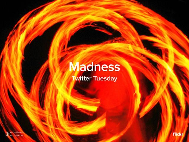 TwitterTuesday: Madness