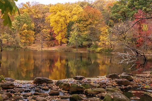 lake nature water reflections scenic yonkers westchestercounty tibbettsbrook
