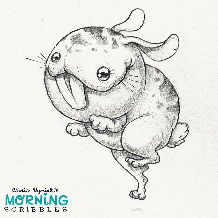Toofy Rabbit Morningscribbles Chris Ryniak Flickr