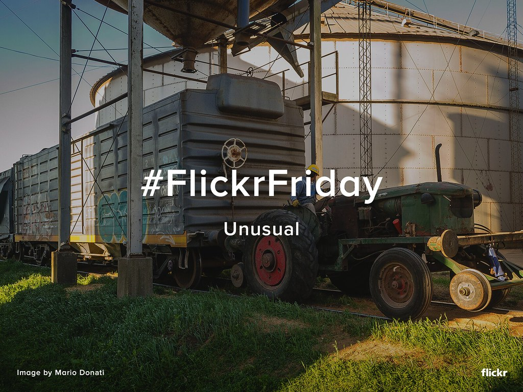 Flickr Friday - Unusual