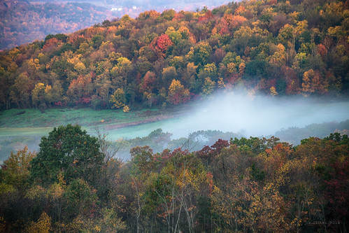 alleganycounty maryland frostburg ef70300mmf456isusm fall autumn trees leaves colors fog