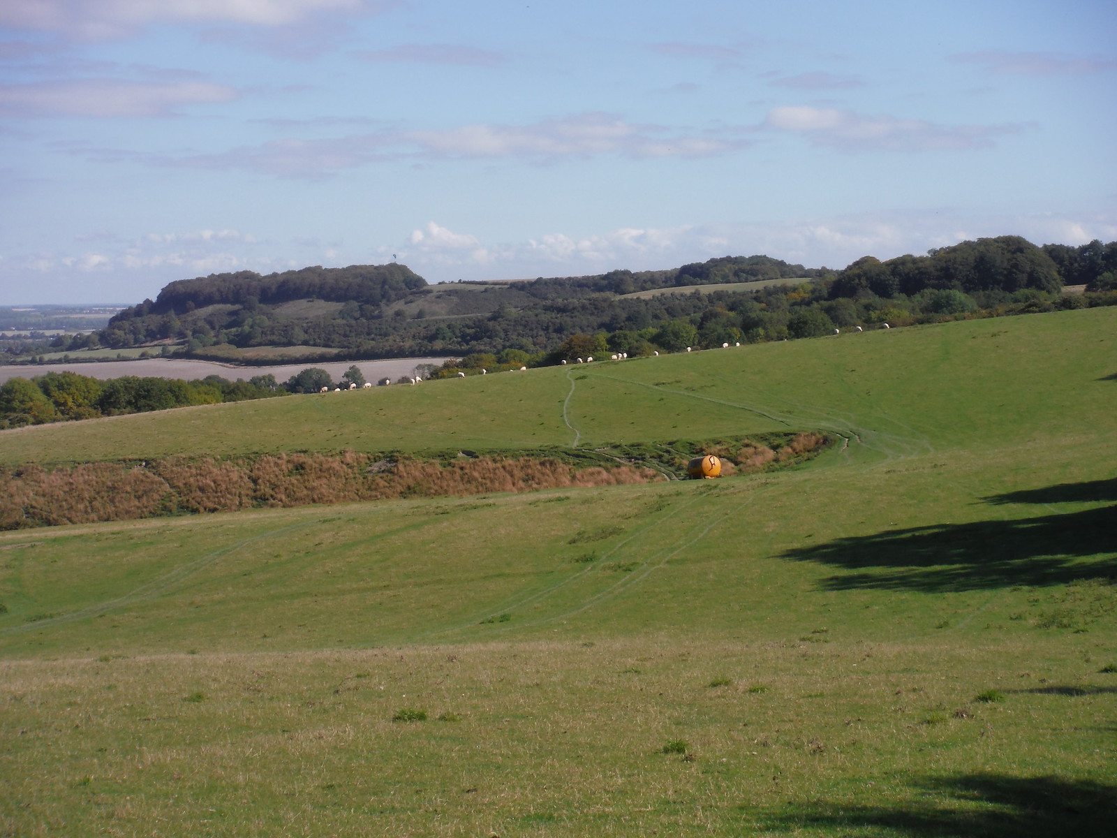 View across Sundon Hills to Sharpenhoe Clappers SWC Walk 230 Harlington to Flitwick