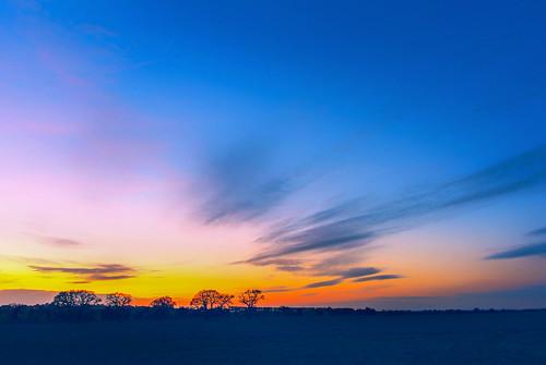 trees winter sunset tree colors beautiful beauty field silhouette rural bright dusk bare horizon hill flare fields basingstoke