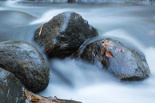 Water and Rocks | by William_Doyle